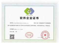 师慧软件企业证书