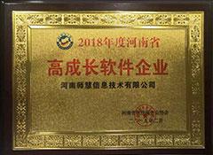 2018年度河南省高成长软件企业